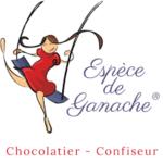 espèce de ganache_salon chocolat lorient